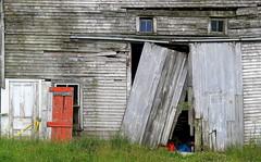 Survivor: The nearby barn after a farmhouse fire, Surry, Maine, USA