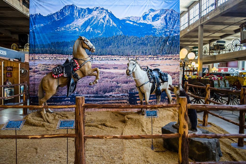 Le musée western de Stockyards Station (Texas) 37161993436_2460612697_b