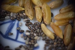 Chia Seeds with Kamut