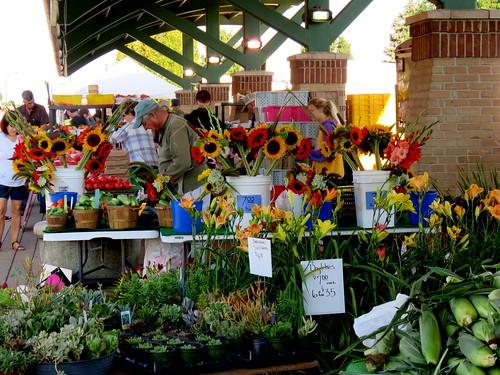 Holland Farmer's Market