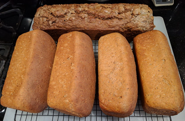 Whole Wheat Flax Bread 8
