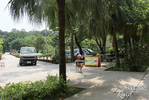 160914g Po Lin Monestary _34