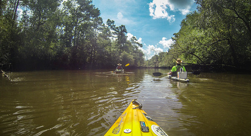 Lynches River with Lowcountry Unfiltered-33