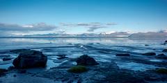 Rocks on low tide