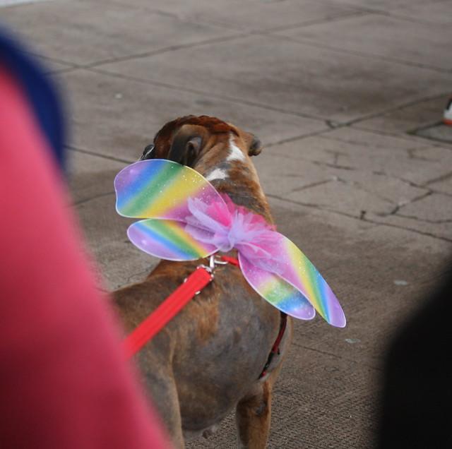 Glasgow Pride 2017