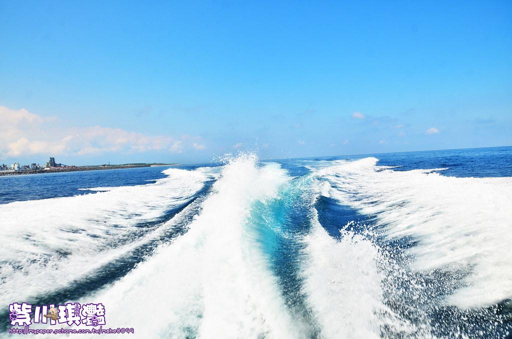 鯨彩悠活海洋俱樂部YOHO Club-0014