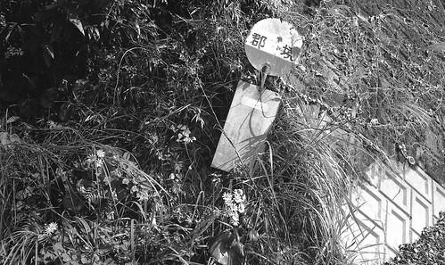 PB J1 15 207.18 Leica M5 × Summicron 35mm F2 鹿児島県鹿屋市#