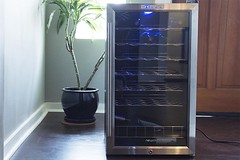 Newair wine fridge with glass door and plant