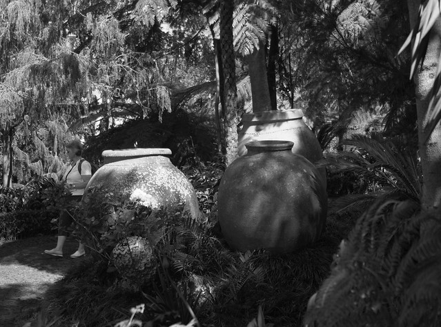 Jugs in the Jungle, Pentax K-5, smc PENTAX-DA 18-55mmF3.5-5.6AL WR