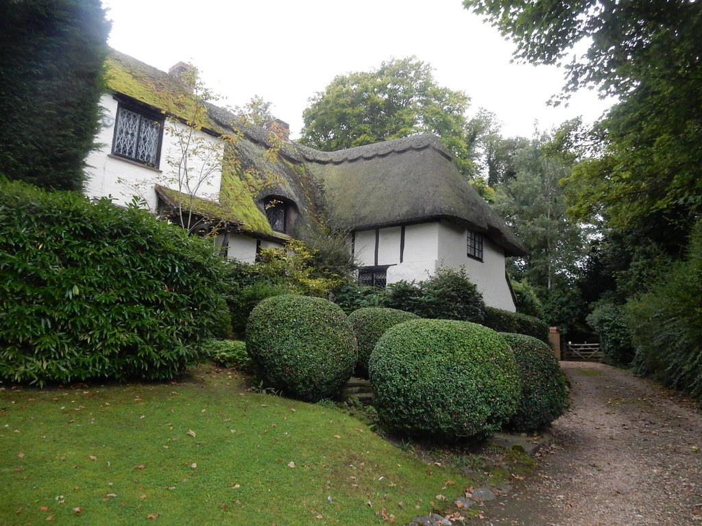 Strangely topiaried house. Slightly off-piste. Down the lane from the Five Elms. Aylesbury Vale PW to Aylesbury