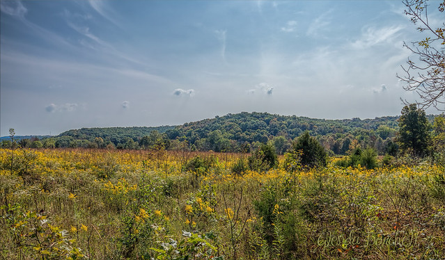 First Day of Autumn In Ohio Foothills