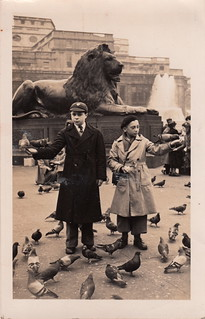 Feeding the pigeons, Trafalgar Square by A. W. Dove (12 April 1949)