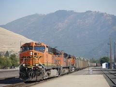Coal Train at Missoula