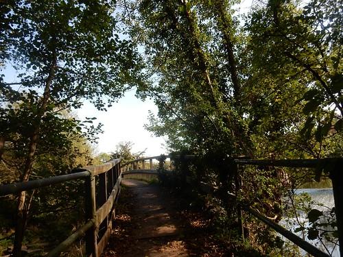 Bridge over the Mole