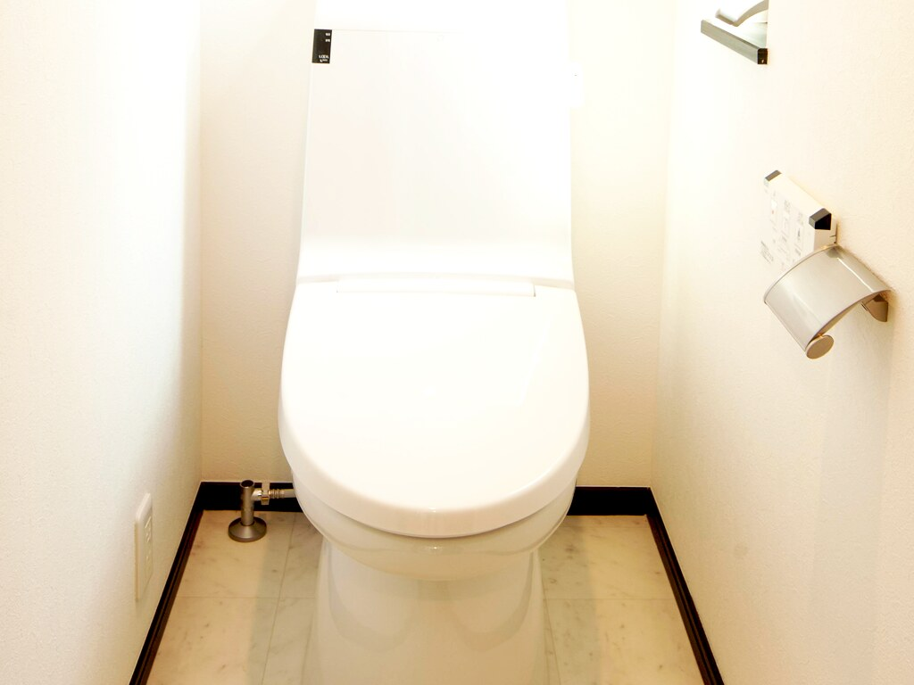 シンプルな機能性を備えたトイレ