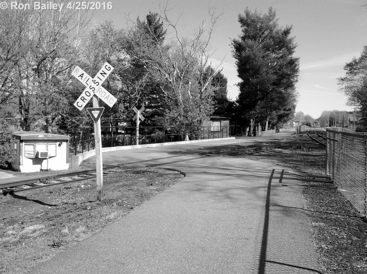 Bikepath Walk 4-24-16 05 BW