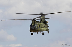 Royal Netherlands Air Force CH-47D Chinook D-101