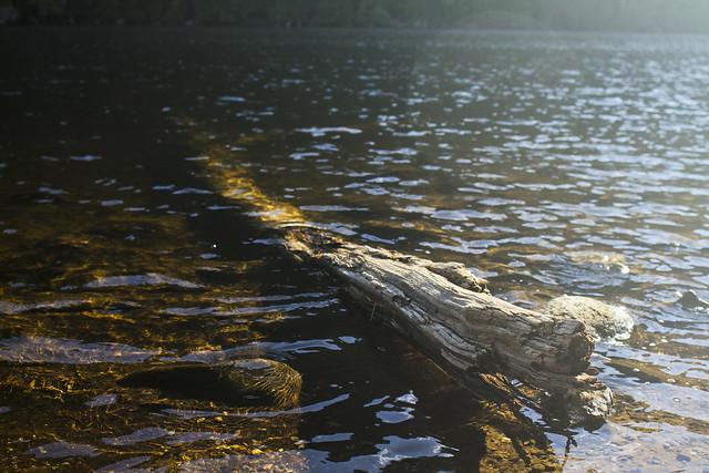 Chapel Pond, NY
