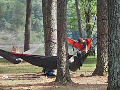 hammocking in McFarland