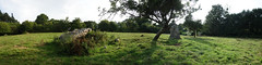 L'alignement de menhirs de la Bouaderie près de Gosné - Ille-et-Vilaine - Septembre 2017 - 17 - Photo of Liffré