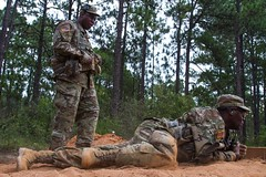 Army Reserve drill sergeants support 'summer surge' of new recruits