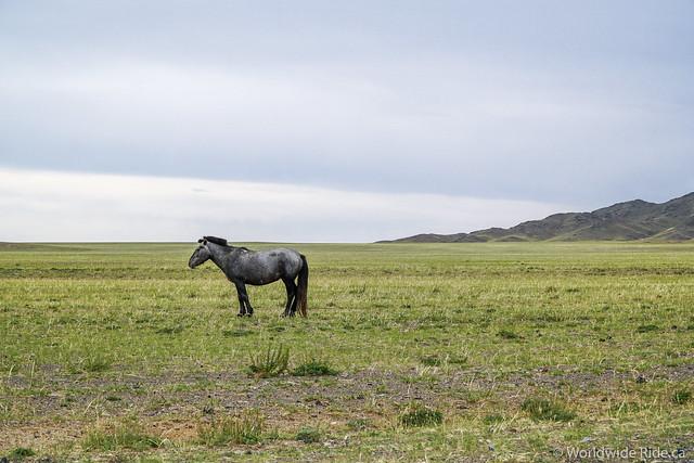 Mongolia Khovd to Ulaangom_-27