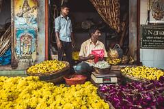 Flowers Seller - Pondicherry - Grand Bazar