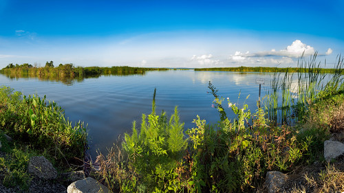clear usa panorama landscape calm lakeapopkawildlifedrive cloud water apopka sky ©edrosack lake centralflorida nature florida cloudy