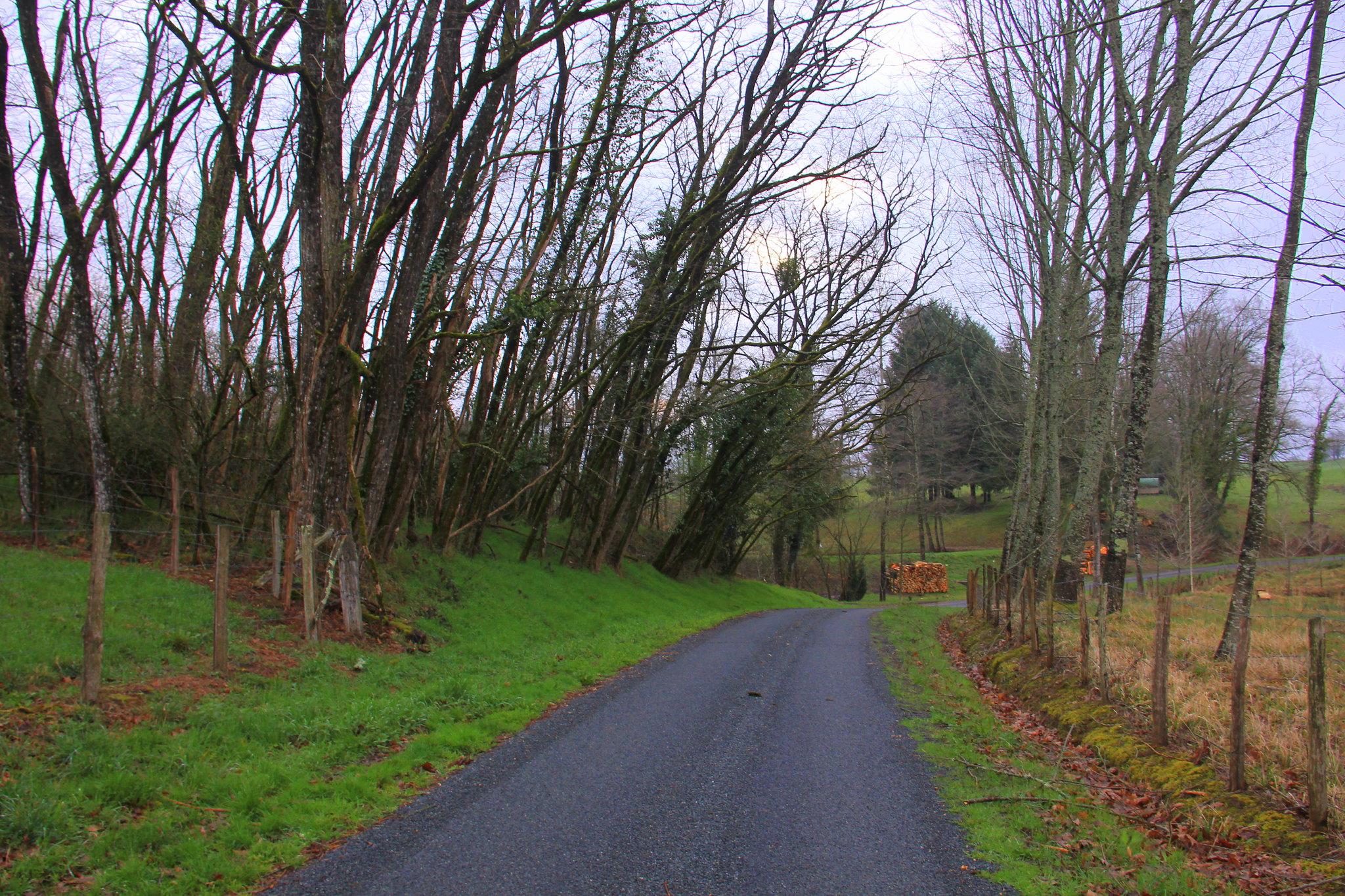 Rain wet roads of dordogne