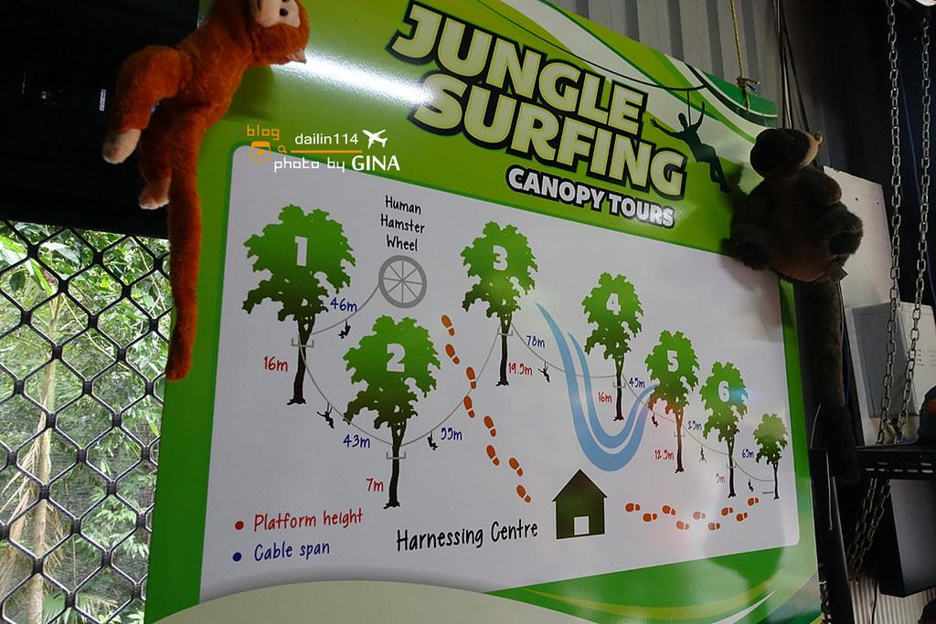 澳洲凱恩斯景點》苦難角(Cape Tribulation)丹樹河遊船(Daintree River Cruise)帥哥教練團的叢林飛天滑索道(Cape Tribulation Jungle Surfing) @Gina Lin