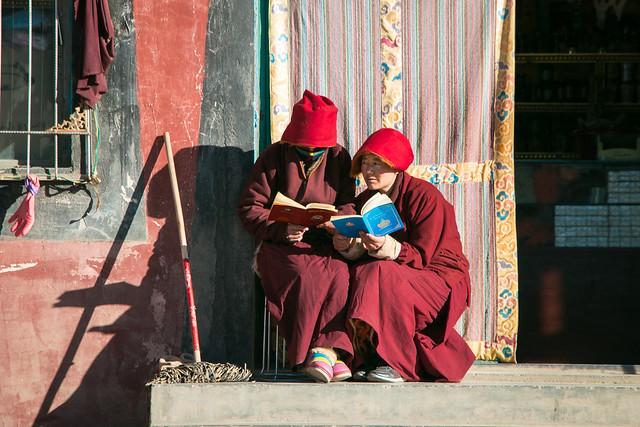 Nuns studying outdoor, Yarchen Gar アチェンガルゴンパ 日向ぼっこしながら勉強する尼僧たち