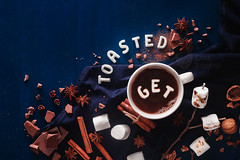 Get Toasted logo