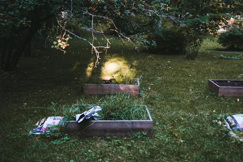 blogiin_puutarha-8