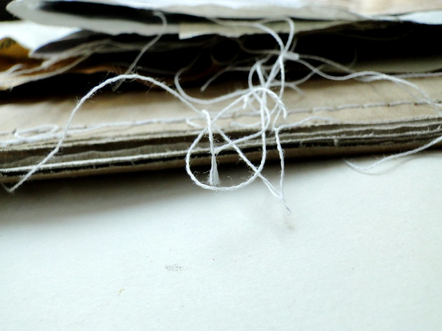 stitched stories - ...aus, Sony DSC-HX1