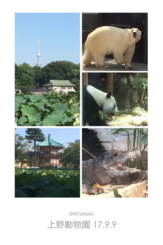 上野動物園I