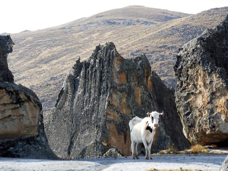 Peru - Huaraz - Hatun Machay