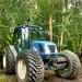 Woodland Machinery (3)