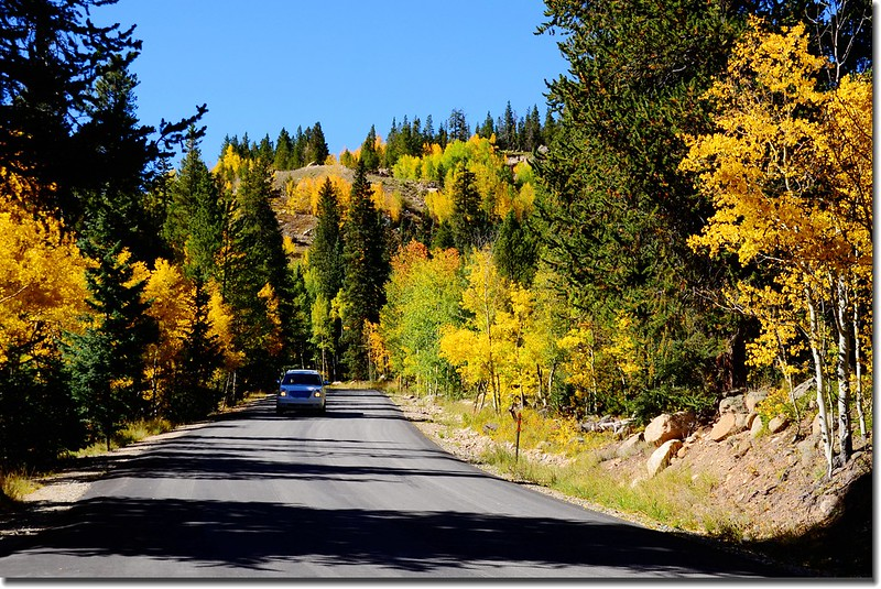 Fall colors, Guanella Pass, Colorado (36)