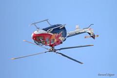 Flying Bulls BO105 C - D-HTDM - Photo of Vignolles