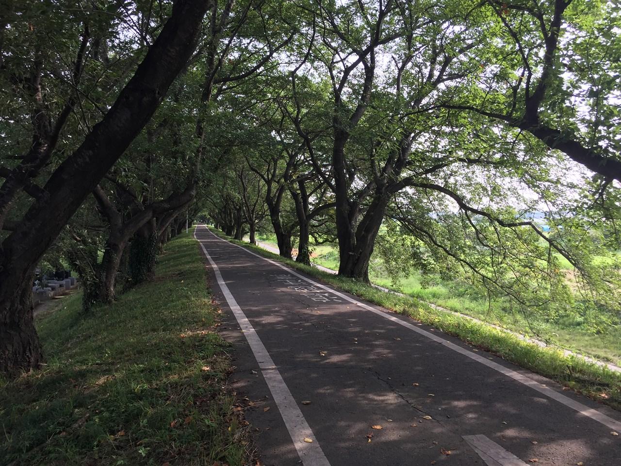 20170826_Arakawa Long Run (19)