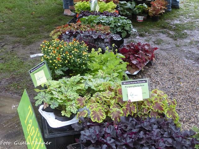 Gartenmesse Schkopau