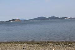 Fidalgo Bay