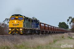 SSR Grain Train - C509 & C504