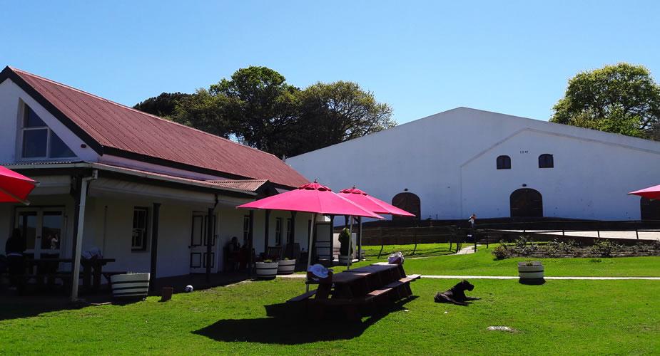 Wijn proeven in Stellenbosch, Middelvlei wines | Mooistestedentrips.nl