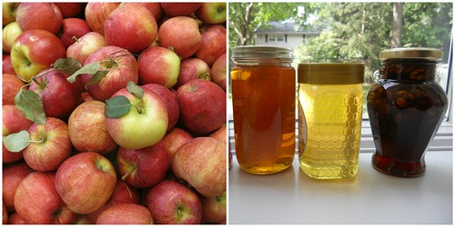 Rosh ha Shana Colours - Apples and Honey