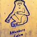 Die Störche vom Affenberg