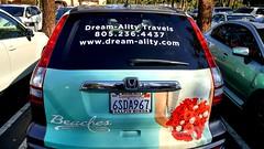 Dream-Ality