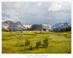 Alpine Meadow, Mountains, Storm Clouds