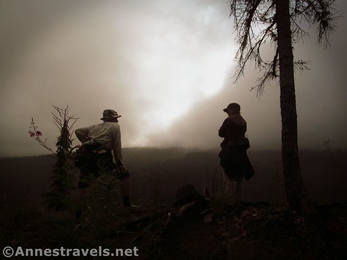Looking into the mist on the Mazama Trail, Mt. Hood National Forest, Oregon
