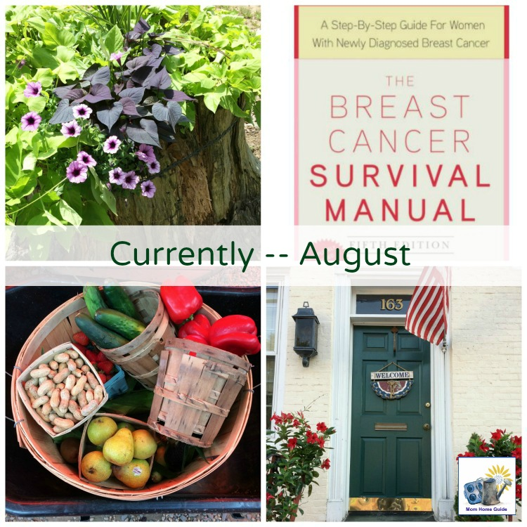 august-2017-currently-mom-home-guide
